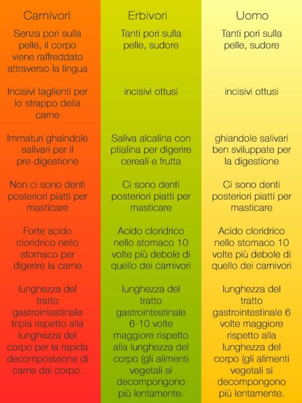 dieta anabolica del dott.mauro di pasquale